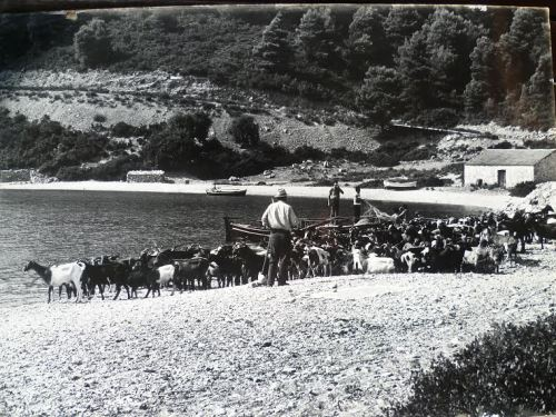 Panormos 70s. Lambros taverna on right - fisherman's hut on left.