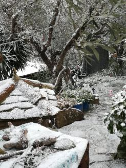 snow 16 02 2021 2