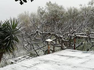 snow 16 02 2021 3